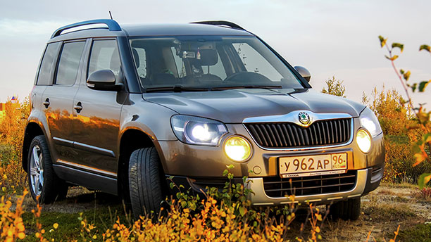 Ein Auto mit XL-Reifen steht zwischen Sträuchern.